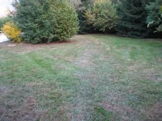 Tonte de pelouse voiron en s re for Devis pelouse